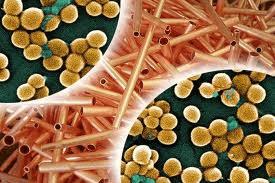 El cobre material antibacteriano